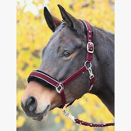 /%/% Busse Halfter Flying Pony doppeltes Nylon /%/%